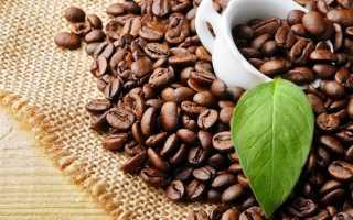 Кофейная гуща для подкормок и отпугивания вредителей
