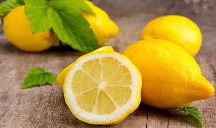 Домашний лимон: уход за цитрусом и сроки получения урожая