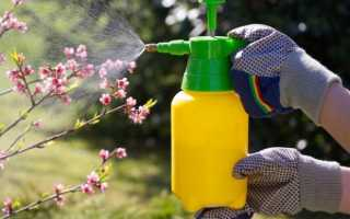 Гумат калия для высоких урожаев: способы применения, дозировки