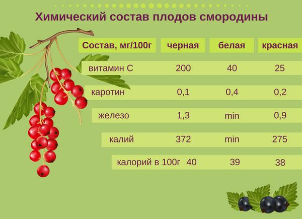 Химический состав ягод