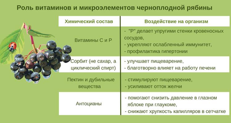 состав рябины
