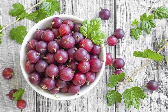 В плодах с темной мякотью больше витамина Р