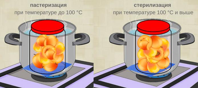 Отличие пастеризации от стерилизации