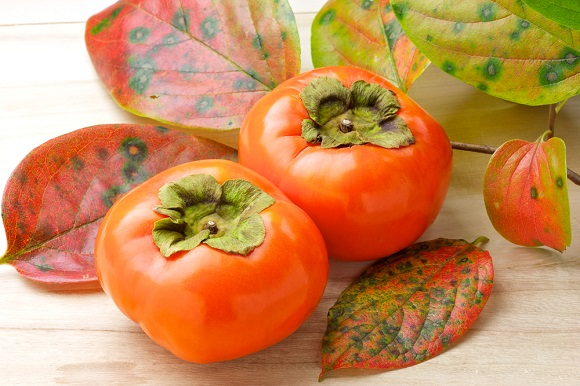 злоупотреблять фруктом