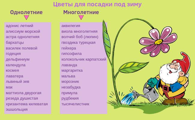 Список цветов
